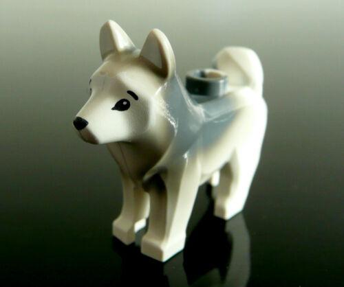 1 x LEGO®17817 Hund,Husky,Schlittenhund,Schneehund Neuware