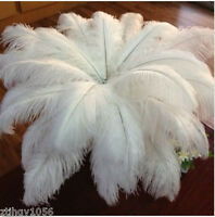 Hot 200pcs 10-12inches/25-30cm white ostrich feathers for Decor Wedding/Party