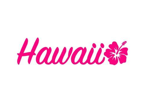 Hawaii Hibiscus Autocollant Vinyle Voiture Fenêtre Ordinateur Portable Surf AUTOCOLLANT
