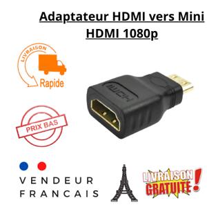 Adaptateur Convertisseur HDMI vers Mini HDMI Connecteur HDTV 1080 p