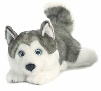 Miyoni Lying Husky 11 Plush Dog Gray Silver White Stuffed Animal Aurora
