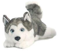 Miyoni Lying Husky 11 Plush Dog Gray Silver White Stuffed Animal Aurora