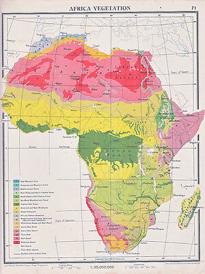 Map Of Africa Vegetation.1941 Map Africa Madagascar Vegetation Bush Woodland Forest Desert Grassland Ebay