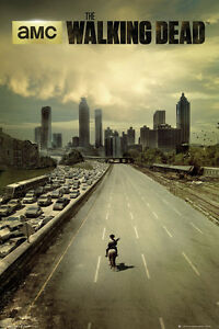 The-Walking-Dead-City-TV-Poster-New-Licensed