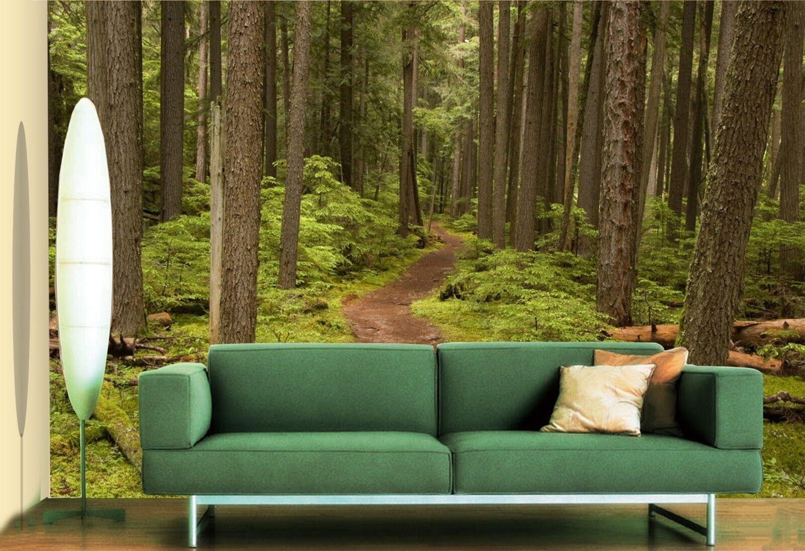 3D Dschungel Pfad Rasen5 Tapete Tapeten Mauer Foto Familie Tapete Wandgemälde DE