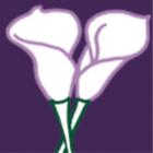 lilyjewellers