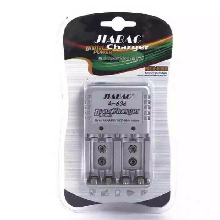 AA/AAA/9V Battery Charger R99