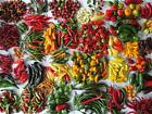 Semi di peperoncino, disponibili 28 varietà tra le più piccanti!!