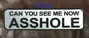 """CAN YOU SEE ME NOW REFLECTIVE for Biker Motorcycle Vest Jacket Back Patches 10"""""""