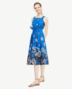 1f0fda8bb3 NWT Ann Taylor Sleeveless Tie Front Poplin Dress $149.00 NEW Azure ...