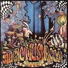 Re-Hash [Remaster] by Magic Mushroom Band (CD, May-2005, United States of Distribution)