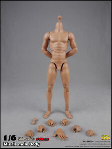 COOMODEL-BD004-COO-Standard-Male-Muscle-High-Body-27cm-Skin-color-1-6