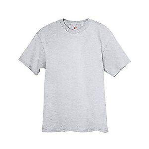 eb81ecba8ad29 Hanes 5250 Tagless T-shirt Light Steel Grey 2xl