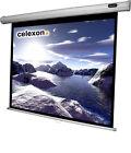 Celexon Economy 1090036 Manual Screen Leinwand