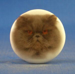 1-034-BIRCHCROFT-PORCELAIN-CHINA-BUTTON-PERSIAN-CAT