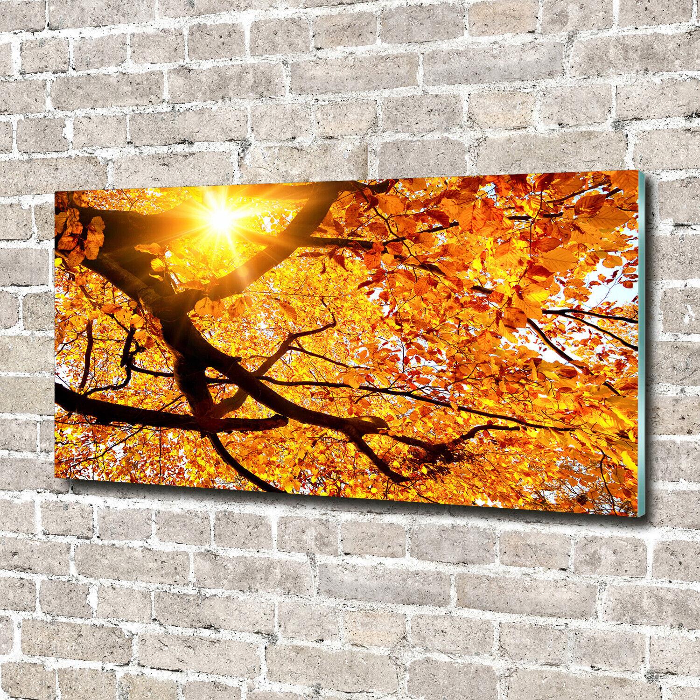 Acrylglas-Bild Wandbilder Druck 140x70 Deko Blaumen & Pflanzen Baumkronen