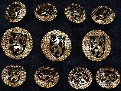 Gold Blazer Buttons with Rampant Lion and Herringbone Background