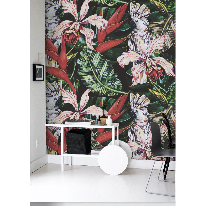 Tropical Parreds decoration parred bird wild wildlife fauna jungle Wall Mural