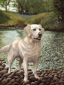 Nigel-Hemming-WHITE-GOLD-SMALL-Golden-Retrievers-Goldies-Gun-Dog-Forest-Art
