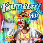 Karneval Hits von Various Artists (2013)