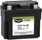 BikeMaster - DLFP-12A-A - Lithium Ion Battery