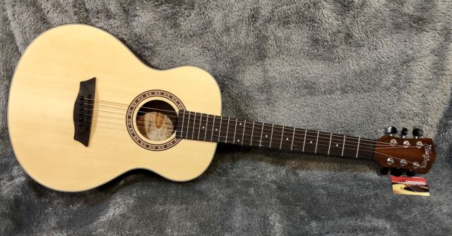 Acoustic Guitar Washburn Apprentice D5 with Case