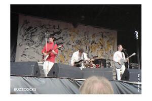 Buzzcocks, Pukkelpop Festival, Hechtel, Belgium, 1990