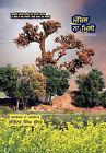Manzil Na Milee by Surinder Sunner, Surindara Sicngha Sunnaora (Hardback, 2011)