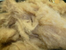 Camel Loose Fiber Washed Dehaired Super Clean Spinning Carding Half Pound