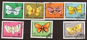 MONGOLIA-I-diversi-farfalle-della-natura-111T3