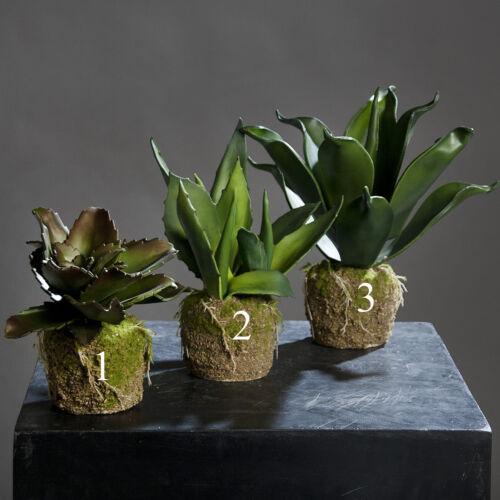 Agave art plante dekopflanze artificiellement Plante grasse 56351 f83