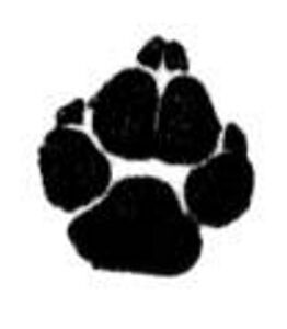 Animal Paw Print Dog Cat Unmounted Clear Polymer