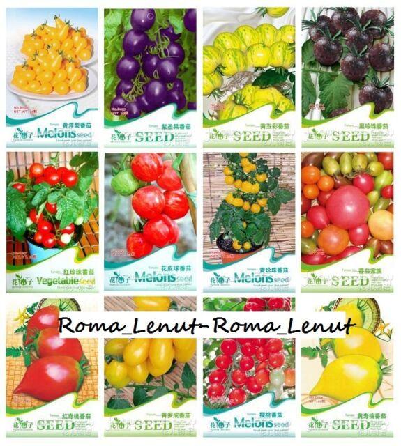 300 Tomatensamen-(30 Sorten)- Cherokee+Lila+Schwarz+Rot+Gelb+Grün Bio-100% !!!