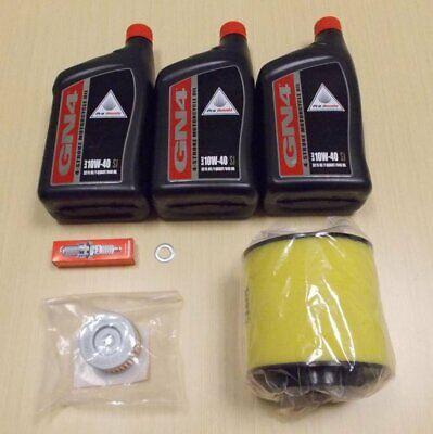 New 2000-2006 Honda TRX 350 TRX350 Rancher ATV OE Starter Brush Kit