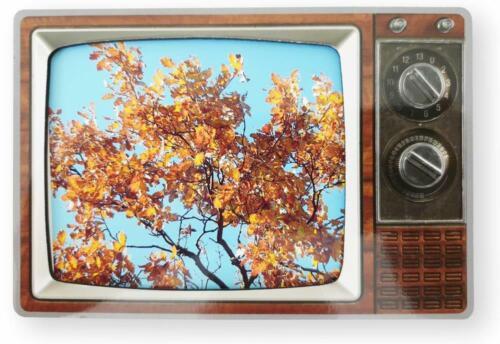 DKB Aimant Cadre photo retro design cadre photo magnétique NOSTALGIE 14 x 10 cm