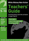 Teachers' Guide Year 5 by Gill Matthews (Paperback, 2011)