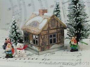 Gnome-Home-Winter-Cat