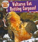 Vultures Eat Rotting Corpses!: by Miriam Coleman (Hardback, 2014)