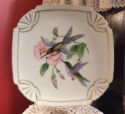 "Nice Hummingbird Square Porcelain Plate G931 Gold Trim 8.5"" x 8.5"" Floral Design"
