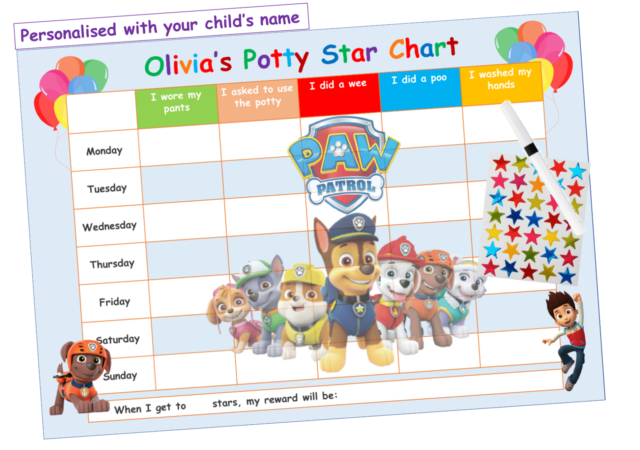REUSABLE 2 x Potty Training Reward Charts 176 Smile Face Stickers and A4 chart