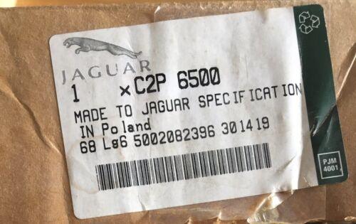 * Neuf Véritable Jaguar XK Filtre à air C2P6500
