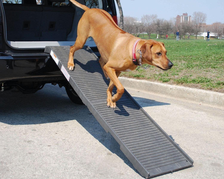 PetSTEP Folding 70  Dog Ramp 222K - KHAKI New