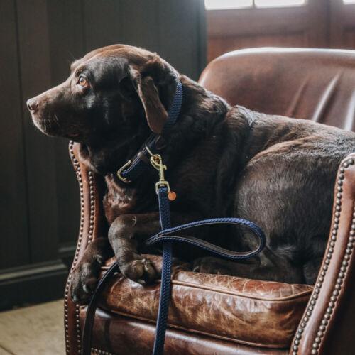 Navy Kentucky Halsband Plaited Nylon Dog collar