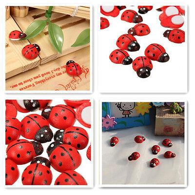 100X Mini Wooden Ladybird Ladybug Sticker Adhesive Fridge Party Decorating Craft