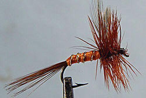 10 x Mouche de Peche Sèche Imago Cerise  H12/14/H16/H18 cherry spinner dry fly