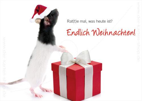 Geschenk Endlich Weihnachten A6 Postkarte Weihnachtskarte Ratte Nikolausmütze