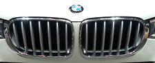 BMW Brand 2015+ F25 X3 F26 X4 OEM OEM X-Line Titanium Silver Front Grille Pair