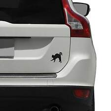 Cat Stalking Apple Vinyl Decal for Vehicles / Car Decal / Vinyl Decal / Trans...