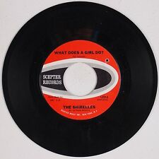 THE SHIRELLES: What Does A Girl Do? / Don't Let it Happen SCEPTER Soul 45 NM