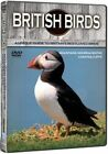 British Birds Mountains Moors Heaths Coasts and Cliffs 5060162459882 DVD